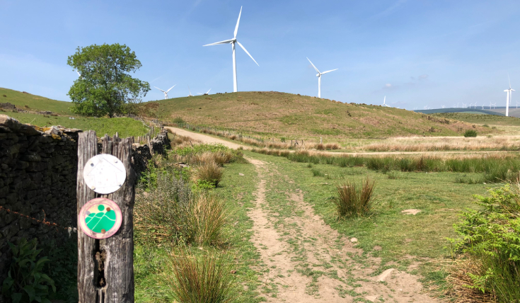 walking local windfarm