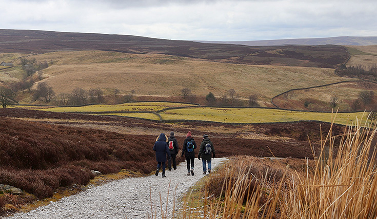 Four people walking down a path that winds between low hills