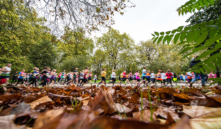 Fallen leaves with many runners passing behind