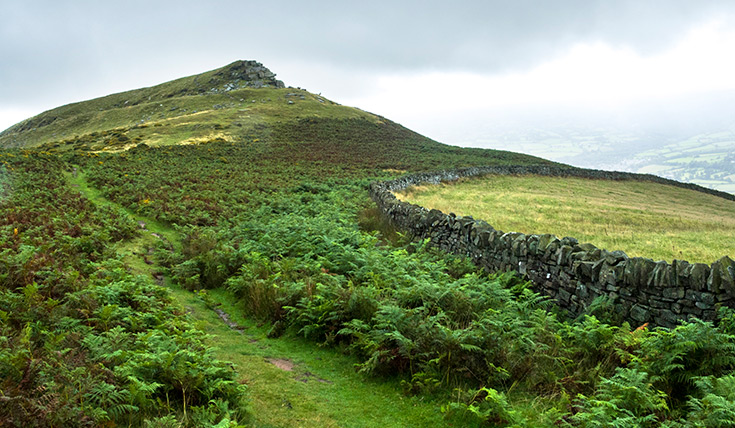 A hill top, with a path winding up between the ferns and a stone wall