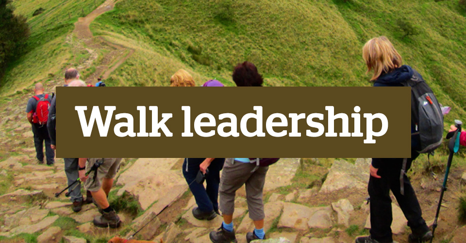 Walk leadership