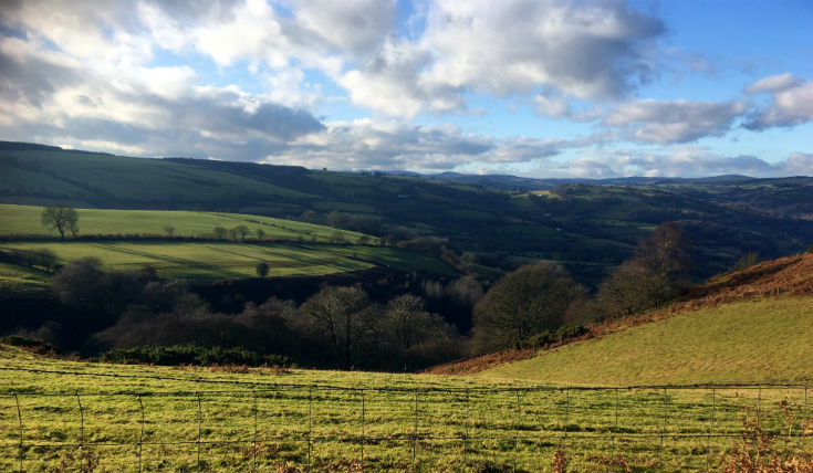 Ceiriog Valley walk