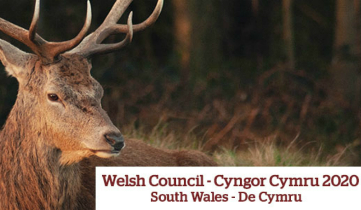 Welsh Council 2020