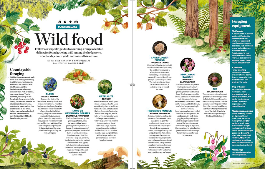 two page spread on Wild Food