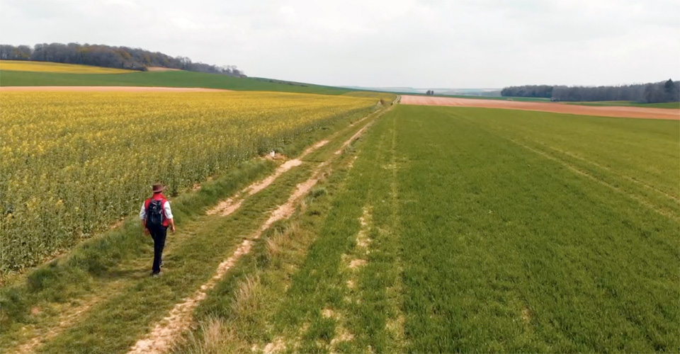 One person walking a long straight path in a flat field