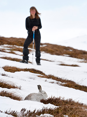 A woman stands, looking at a white hare