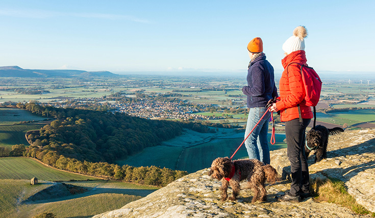 Two people with a dog, looking out at a view