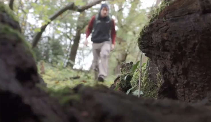 A view from down low, beside a dark tree of a man walking in the woods