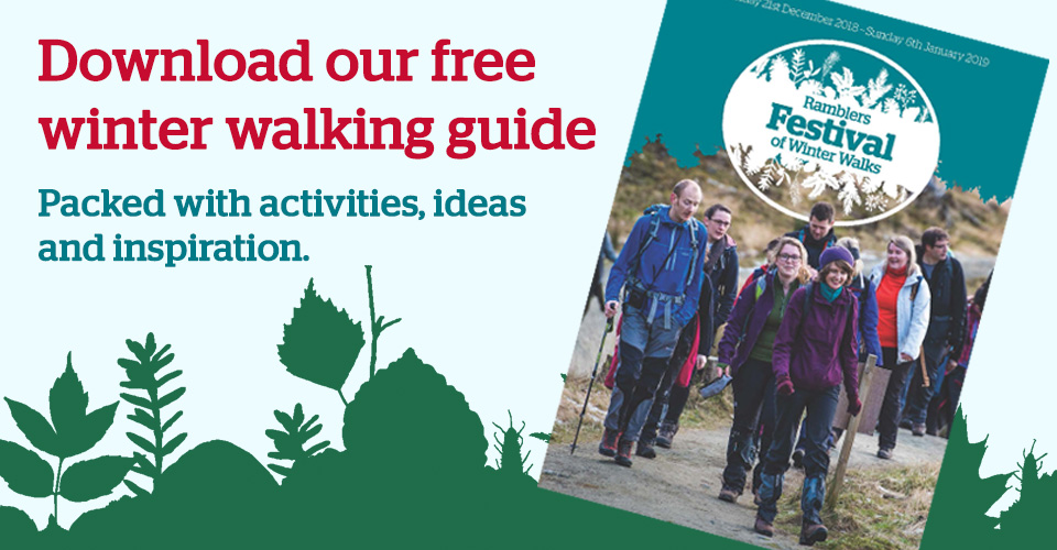 Download our free winter walking guide