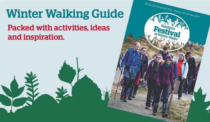 Winter Walking Guide