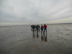 Walking the broomway