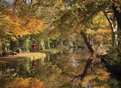 Autumn by the canal, credit to the Canal and River Trust