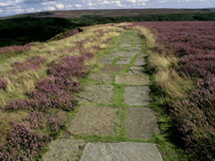 Cleveland Way (image credit: Natural England / Mike Kipling)