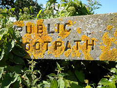 Overgrown footpath sign