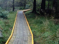 Installing a boardwalk in Peaton Hill Community Nature Reserve