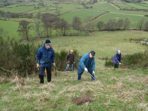 Scarborough Ramblers clearing vegetation in the North York Moors National Park