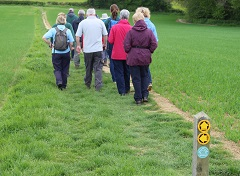 Walking the newly improved Sussex Border Path