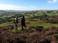 Walkers in Weardale