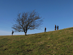 Walkers on Pontesford Hill