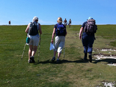 Walkers on South Downs Way