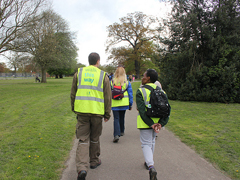 Walking for health walk in a park