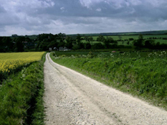 Yorkshire Wolds Way Wharram view (image credit: Natural England / Mike Kipling)
