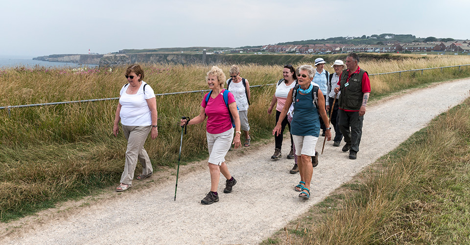 A group of people walking along a footpath beside grasses and the coast