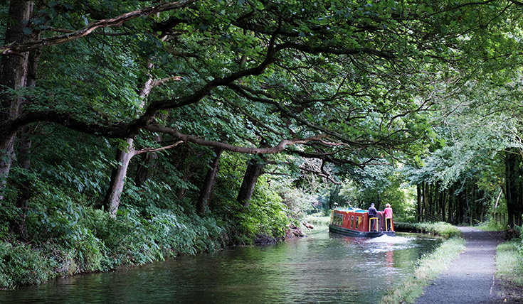 A canal barge on the water with large trees above