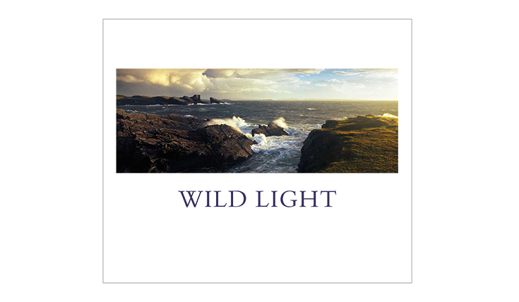 Cover of the book Wild Light with a seascape photo