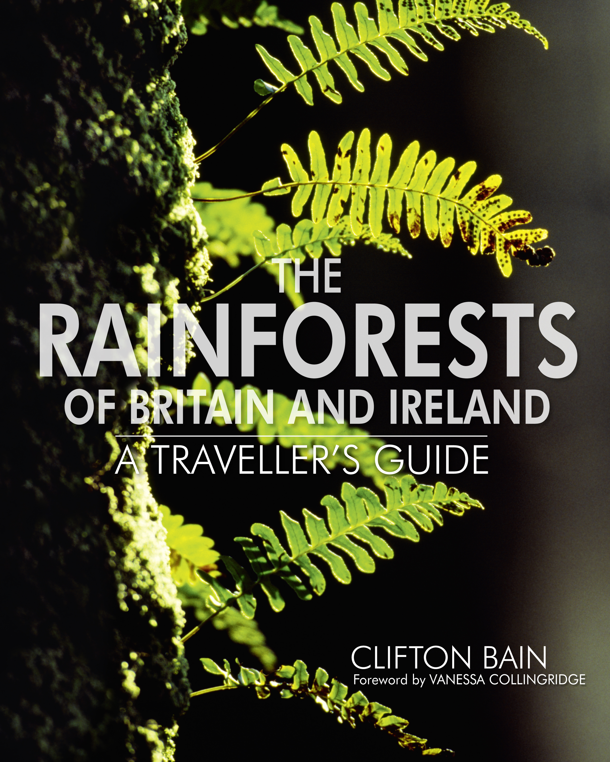 Rainforests of Britain and Ireland
