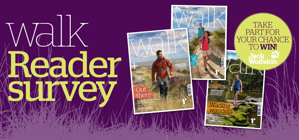 Take the Walk reader survey