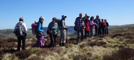 AA4 Admiring view from Foel  Dinas.jpg